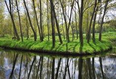 See mit Wald Lizenzfreie Stockbilder