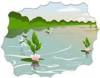 See mit Wasserlilien Stockbild