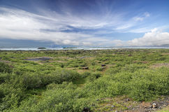 See Myvatn (Island) Stockfotos
