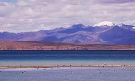 See Nam in Tibet Lizenzfreie Stockfotos
