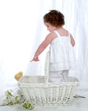 See the Peep!. Baby girl in wicker basket looking at chick in front of white background with flowers on floor Royalty Free Stock Images