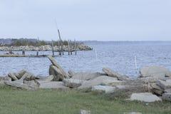 See Pier Lined mit Vögeln Lizenzfreie Stockfotos