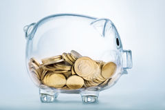 A see through piggy bank Stock Images