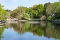See an Pullen-Park lizenzfreies stockfoto