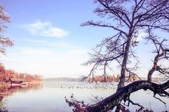 See Starnberg im Herbst stockfotografie