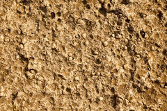 See stone background as a texture. Stock Images