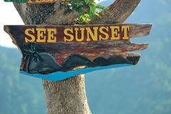 See sunset sign. Made of wood on a tree Royalty Free Stock Photo