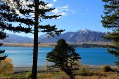 See Tekapo, Neuseeland Stockfotos