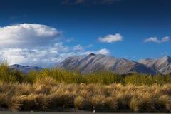 See Tekapo, Neuseeland Stockbild