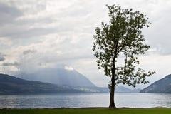 See Thun, die Schweiz Lizenzfreie Stockbilder