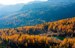 See am Triglav See-Tal im Herbst, Slowenien Lizenzfreie Stockfotografie