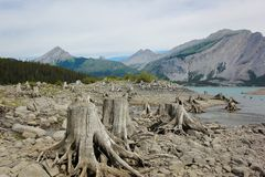 See umgeben durch provinziellen Park Kanada Berg-Laugheed Lizenzfreie Stockfotografie