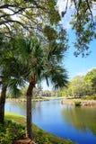 See und Baum in einem Erholungsort Stockfotografie