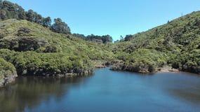 See und Dschungel Stockbilder