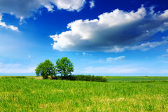 See und grüne Bäume auf Himmelhintergrund Lizenzfreies Stockfoto