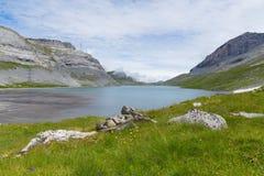See und grüne Wiese mit Blumen Gemmipass, Schweizer Lizenzfreie Stockfotos