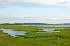 See und grüne Wiesenlandschaft Stockfotografie