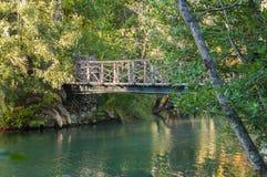See und Holzbrücke in einem Park Lizenzfreies Stockfoto