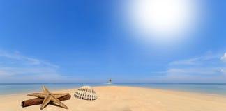 See- und Kokosnusspalme auf einsamer Insel Stockbilder