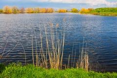 See und Vegetation Stockbild