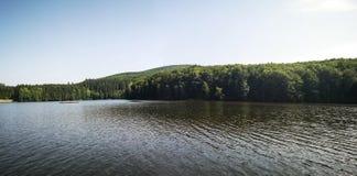 See und Wald Stockbild