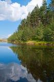 See und Wald auf Zlatibor Berg Lizenzfreie Stockfotografie