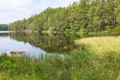 See-und Waldlandschaft Lizenzfreie Stockfotografie