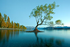 See Wanaka, Neuseeland Lizenzfreie Stockbilder