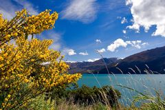 See Wanaka Neuseeland lizenzfreie stockfotos