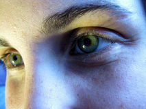 See the Worry in My eye. Green eyes looking forward, amused Stock Photography