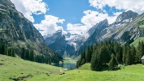 Seealpsee jezioro z Szwajcarskimi Alps, Appenzeller ziemia, Szwajcaria Zdjęcia Stock