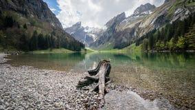 Seealpsee jezioro z Szwajcarskimi Alps, Appenzeller ziemia, Szwajcaria Obrazy Stock