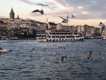 Seeansicht mit einem Dampfschiff und Stadt- und Fliegenmöven stockfotos