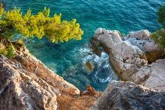 Seeansicht mit felsiger Küste und Kiefern Stockfotografie
