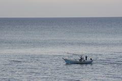 Seeansicht und Fischenkonzept der Natur Stockbild