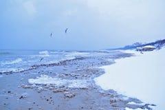 Seeansicht von der Höhe, viel Schnee Lizenzfreie Stockbilder