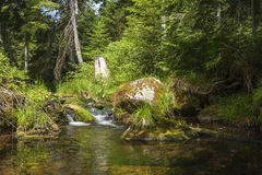 Seebach brook which flows into the Schwarzenbachtalsperre Royalty Free Stock Images