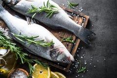 Seebarsch der frischen Fische auf Schwarzem Stockfotografie