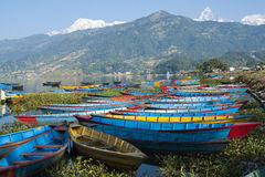 Seeblick in Pokhara Lizenzfreies Stockfoto