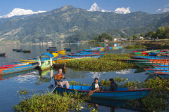 Seeblick in Pokhara Stockbild