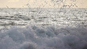 Seebrandungs-Welle an der Sonnenuntergang-Nahaufnahme Langsame Bewegung stock footage