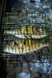 Seebrassen bereiteten sich auf Grill mit Zitrone und Rosmarin vor Stockfoto
