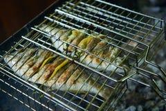 Seebrassen dorado, das auf Grill mit Zitrone und Rosmarin sich vorbereitet Stockfotografie
