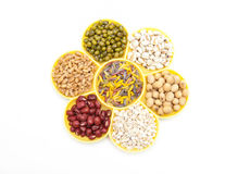 Seed Royalty Free Stock Photo