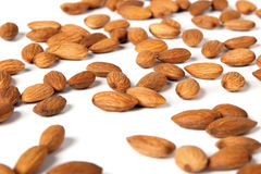 Seed of almonds nuts Stock Photography