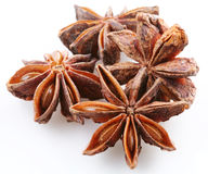 Seed of anise Stock Photo