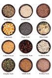 Seed Assortment Royalty Free Stock Image