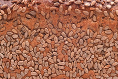 Seed bread texture Stock Photography