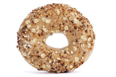 Seed brown bagel Stock Image