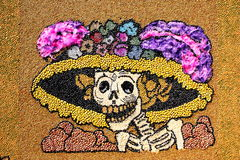 Seed catrina Royalty Free Stock Photo